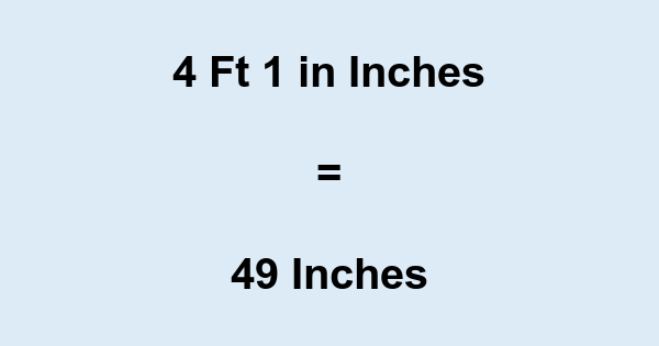 Inch In Inches