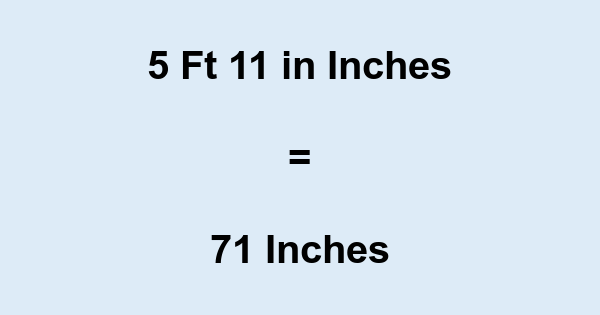 5 Ft 11 in Inches