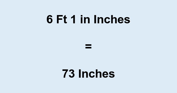 6 Ft 1 in Inches