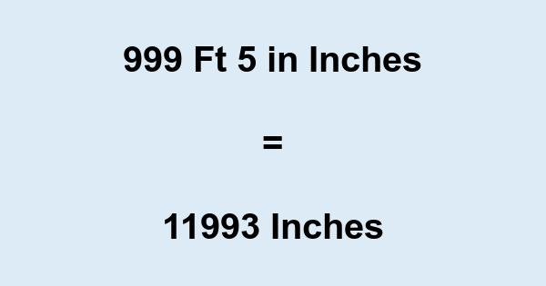 999 Ft 5 in Inches