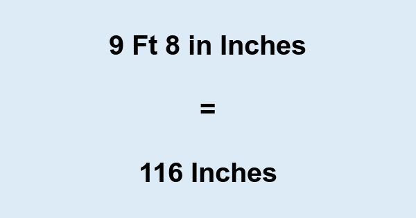 9 8 In 9 Feet 8 Inches In Inches 9 8 To